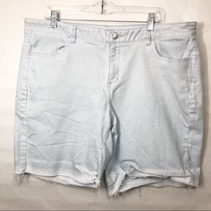 Lane Bryant Shorts